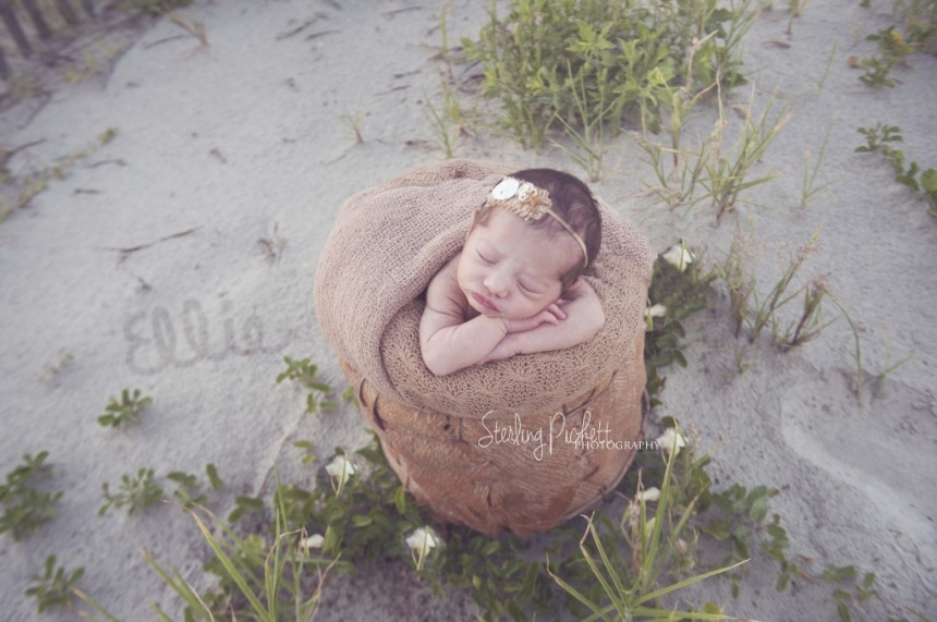 charleston sc newborn photographer